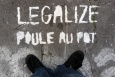 .day.168 ~ legalize it
